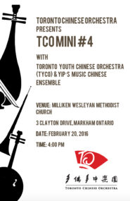 2016-02-20 TCO MINI #4